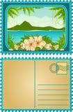 Isla con las palmas y las flores tropicales Fotografía de archivo libre de regalías
