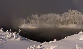 Isla con los árboles en el medio del agua, cubierta por la niebla Foto de archivo libre de regalías