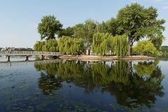 Isla con los árboles reflejados en el agua Foto de archivo libre de regalías