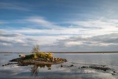 Isla con un árbol en el río imagenes de archivo