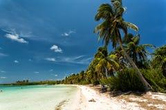 Isla Contoy. Beautiful island Isla Contoy in Mexico Stock Photos