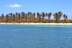 isla contoy en onda del día de México Foto de archivo