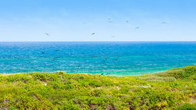 Isla Contoy landscape, Mexico Stock Photography