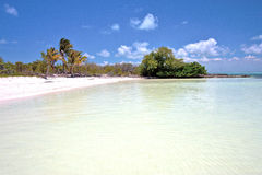 Isla contoy   in mexico and blue  foam Royalty Free Stock Photo