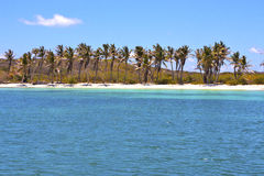 Isla contoy   in mexico day  wave Royalty Free Stock Photos