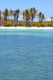Isla contoy   in mexico froath and blue  foam  the Stock Photos