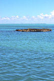 Isla contoy   in mexico froath   sunny day  wave Royalty Free Stock Photography