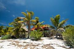 Isla Contoy nel Messico Fotografia Stock