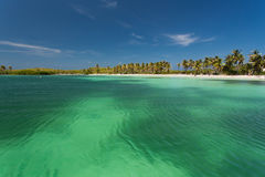 Isla Contoy nel Messico Fotografia Stock Libera da Diritti