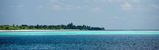 Isla cristalina del árbol de coco del agua de la playa tropical del paraíso de Maldivas Fotos de archivo libres de regalías