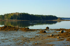 Isla de Carney en la pequeña isla de los ciervos, Maine Fotos de archivo