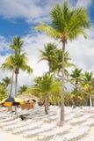 Isla de Catalina - Playa de la isla Catalina - mar tropical del Caribe Imagen de archivo libre de regalías
