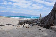 Isla de Chrissi, opinión de la playa sobre Creta Foto de archivo libre de regalías