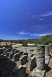 Isla de Croatia - de Brijun fotos de archivo libres de regalías