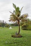 Isla de dios hindú Varun Imagen de archivo