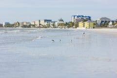 Isla de Estero en la Florida Fotografía de archivo