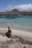 Isla de Floriana (las Islas Gal3apagos) foto de archivo