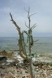 Isla de Formentera Fotos de archivo