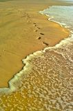 Isla de Fraser, Australia fotos de archivo