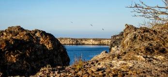 Isla de Hispañola Imagenes de archivo