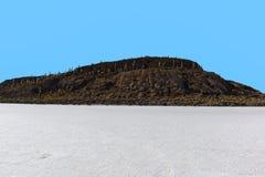 Isla de Incahuasi en el plano de la sal de Uyuni, Bolivia foto de archivo libre de regalías