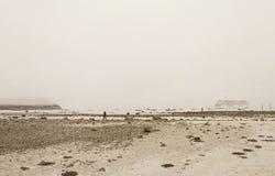 Isla de la barra en el puerto de la barra, Maine Imagen de archivo