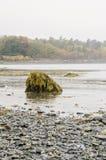 Isla de la barra en el puerto de la barra, Maine Imágenes de archivo libres de regalías