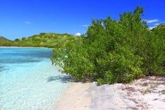 Isla de la carne de vaca - British Virgin Islands Fotos de archivo libres de regalías
