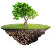 Isla de la hierba verde con el árbol libre illustration