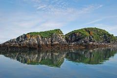Isla de la jerarquización del pájaro de la isla del Kodiak foto de archivo