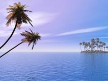 Isla de la palma ilustración del vector