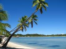 Isla de la plantación, Fiji Imágenes de archivo libres de regalías