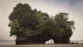 Isla de la playa de la marea baja, océano colombiano de Pacifico Foto de archivo