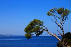 Isla de la roca en Brela, Croacia Imagenes de archivo