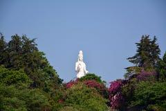 Isla de las aduanas de Nanzhao con Kwan-yin Foto de archivo