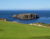 Isla de las ovejas, Irlanda Fotos de archivo