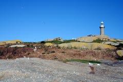 Isla de Montague Imagen de archivo