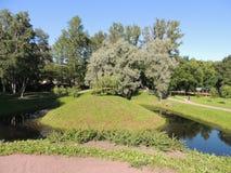 Isla de parque en una trayectoria de los árboles de la charca Imagen de archivo