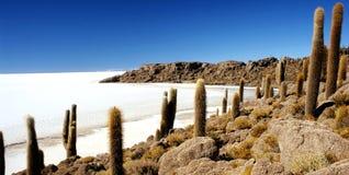 Isla de Pescado lizenzfreies stockfoto