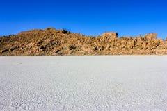 Isla de Pescadores,Uyuni,Bolivia Royalty Free Stock Photos