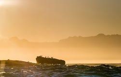 Isla de piedra con las siluetas de pájaros en una neblina del pre-amanecer Fotos de archivo libres de regalías