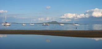 Isla de Rangitoto. Foto de archivo libre de regalías