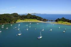 Isla de Roberton - bahía de las islas, Nueva Zelandia Imagen de archivo libre de regalías
