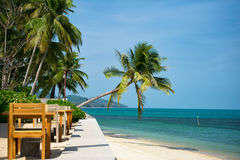 Isla de Samui, Tailandia Imagen de archivo libre de regalías