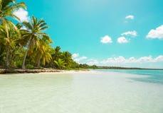 Isla de Saona, Punta Cana, República Dominicana imagen de archivo libre de regalías