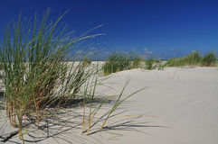 Isla de Schiermonnikoog, playa blanca de la arena holanda Foto de archivo