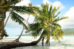 Isla de Tahaa Foto de archivo