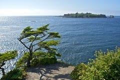 Isla de Tatoosh Imagen de archivo libre de regalías