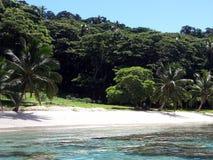 Isla de Taveuni Fotos de archivo libres de regalías