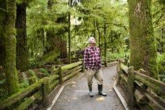 Isla de Vancouver provincial de la arboleda de la catedral del parque de MacMillan Foto de archivo